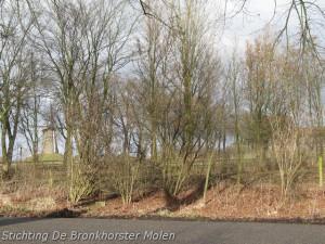 5 februari 2010: School De Boom in bij Bronkhorster Molen